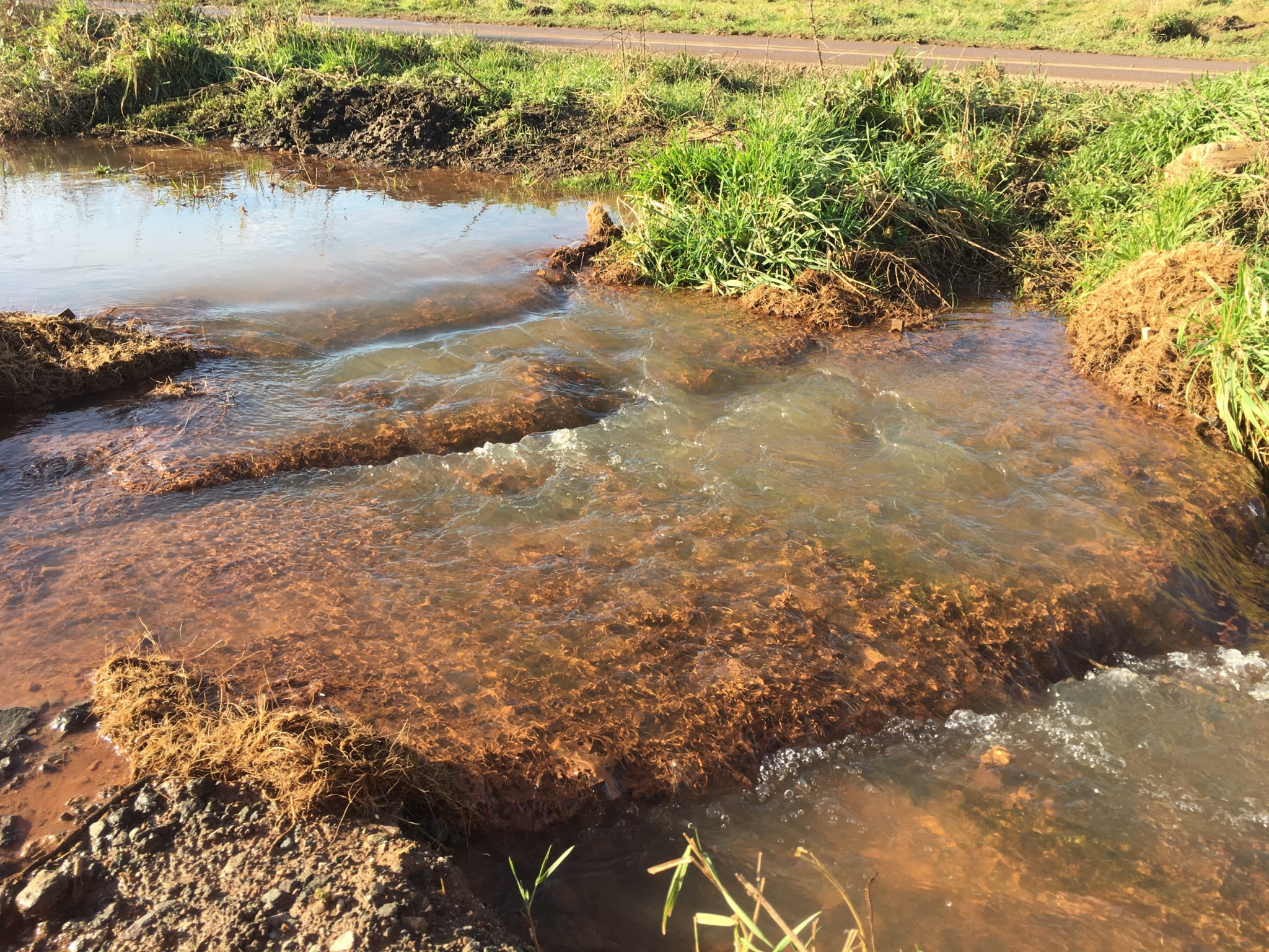 Floc Mat in site drainage ditch