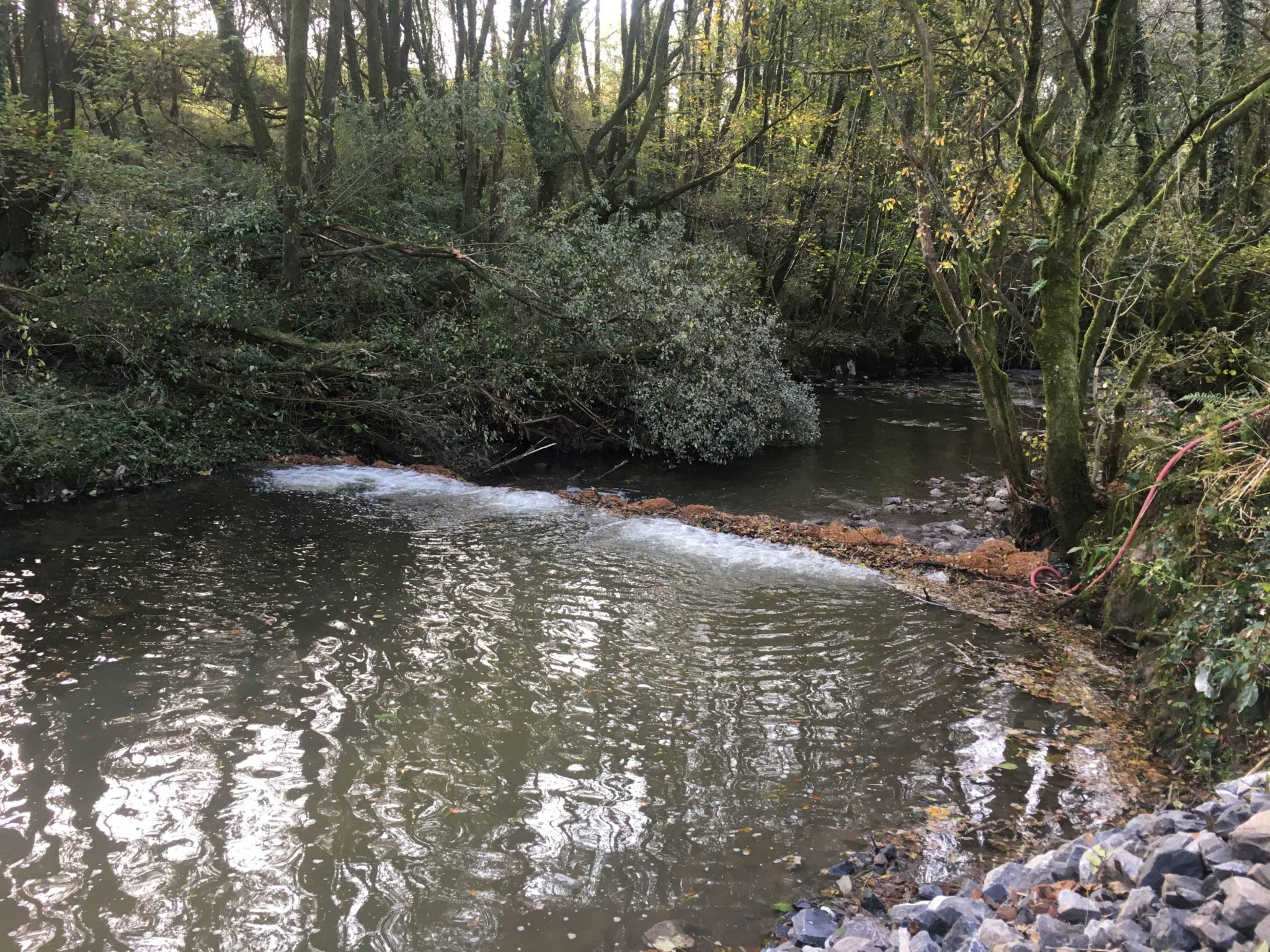 Four lines of Bubble Tubing® were deployed to create a bubble curtain boosting oxygen levels downstream of works and providing a further barrier to silt movement